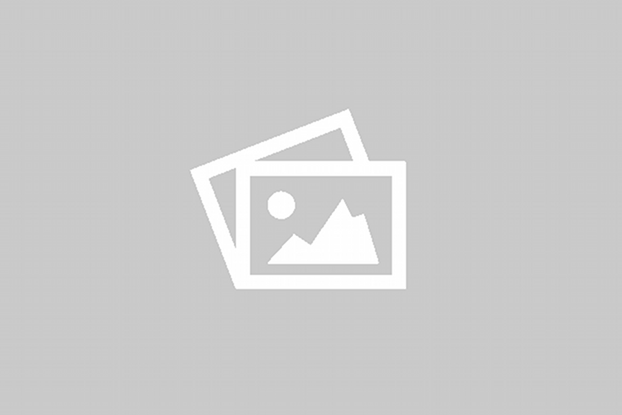 10er Pack Aufkleber – Adler Mannheim Fans on Tour