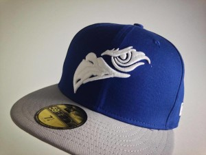 Adler Mannheim Fanprojekt / New Era 59FIFTY: Front