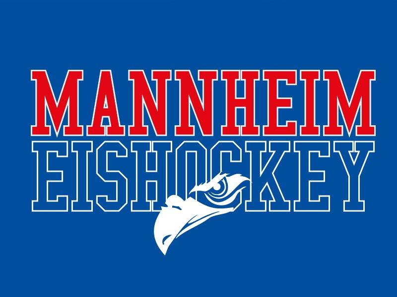 Eishockeystadt T-Shirt